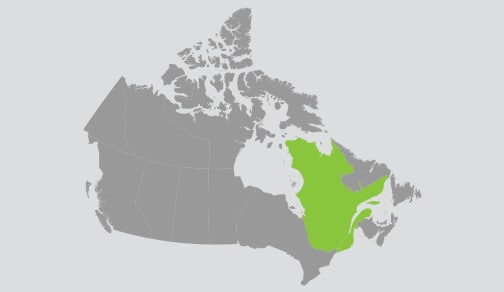 Map of Canada with Quebec highlighted